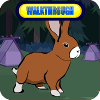 Brown Bunny Rescue Walkthrough
