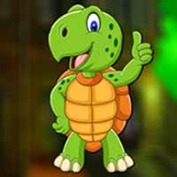 Cartoon Turtle Game