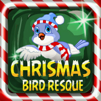 Christmas Bird Resque
