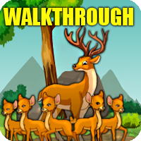 Deer Adventure Escape Walkthrough
