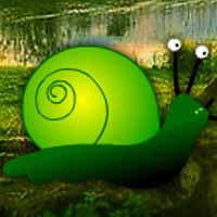 Green Snail Forest Escape
