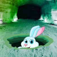 Ice Cave Bunny Rescue