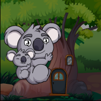 Koala Bears Escape