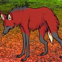 Maned Wolf Escape