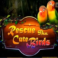 Rescue The Cute Birds