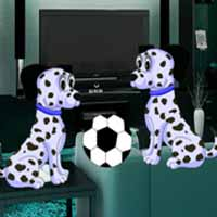 Save The Dalmatian Dog