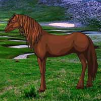 Save The Exmoor Pony