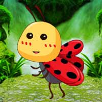 Save the Cute Ladybug